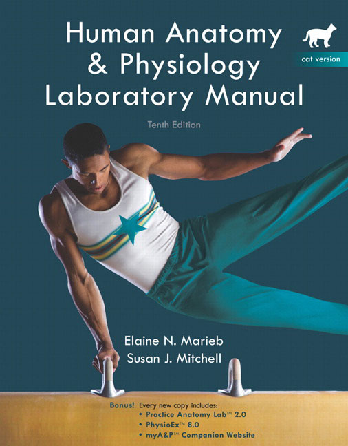 physioex exercise 8 Exercise 5 learn about cardiovascular dynamics by completing the following lab simulation download and open the lab instruction worksheet.