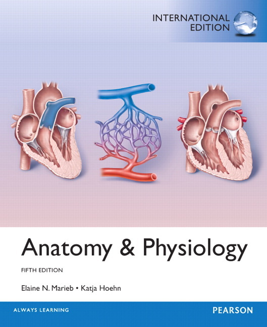 anatomy and physiology physio x 8 0 Find great deals on ebay for anatomy and physiology and physiology, fetal pig version / physioex 91 50 out of 5 stars - anatomy and physiology by.
