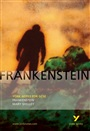 Frankenstein: York Notes for GCSE